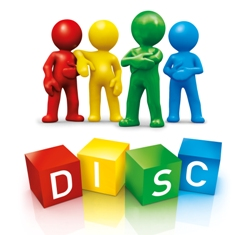 modele raftarie disc